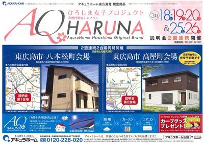 AQ HARUNA.jpg